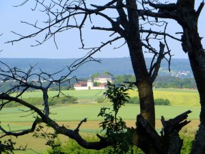 Joggingtour nach Buttenheim am 04.06.2015